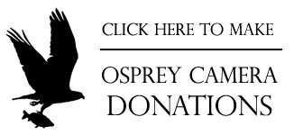 osprey-cam-donations